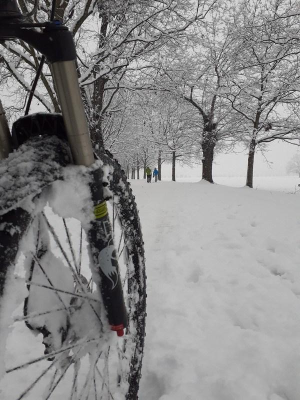 2020.12.28 mtb nella neve 010